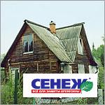Деревянный дом до обработки отбеливателем для древесины